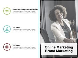 Online Marketing Brand Marketing Ppt Powerpoint Presentation Styles Shapes Cpb