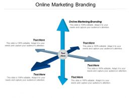 Online Marketing Branding Ppt Powerpoint Presentation Icon Rules Cpb
