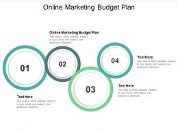 Online Marketing Budget Plan Ppt Powerpoint Presentation File Examples Cpb
