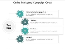 Online Marketing Campaign Costs Ppt Powerpoint Presentation Show Examples Cpb