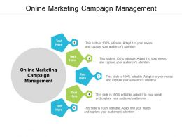 Online Marketing Campaign Management Ppt Powerpoint Presentation Infographic Template Portrait Cpb