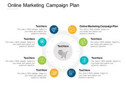 Online Marketing Campaign Plan Ppt Powerpoint Presentation Styles Examples Cpb