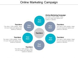 Online Marketing Campaign Ppt Powerpoint Presentation Show Professional Cpb