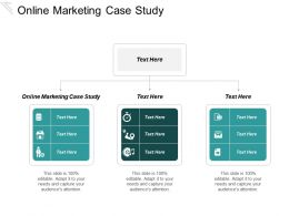 Online Marketing Case Study Ppt Powerpoint Presentation Infographic Template Display Cpb
