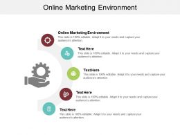 Online Marketing Environment Ppt Powerpoint Presentation Infographics Model Cpb