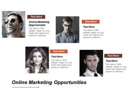 Online Marketing Opportunities Ppt Powerpoint Presentation Styles Graphics Design Cpb