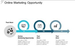 Online Marketing Opportunity Ppt Powerpoint Presentation Background Images Cpb