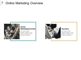 Online Marketing Overview Ppt Powerpoint Presentation Slides Good Cpb