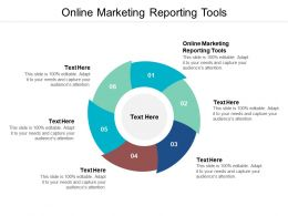 Online Marketing Reporting Tools Ppt Powerpoint Presentation Outline Slideshow Cpb