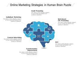 Online Marketing Strategies In Human Brain Puzzle