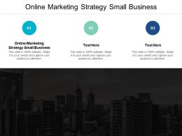 Online Marketing Strategy Small Business Ppt Powerpoint Presentation Ideas Clipartm Cpb