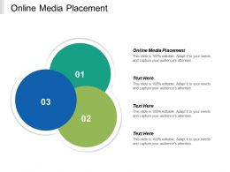 Online Media Placement Ppt Powerpoint Presentation Icon Images Cpb