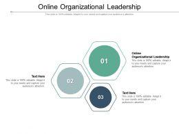 Online Organizational Leadership Ppt Powerpoint Presentation Slides Portfolio Cpb