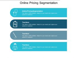 Online Pricing Segmentation Ppt Powerpoint Presentation Example Cpb