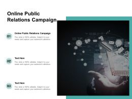 Online Public Relations Campaign Ppt Powerpoint Presentation Icon Smartart Cpb