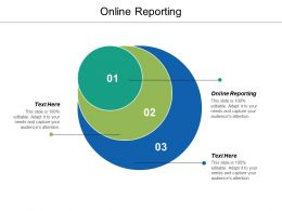 Online Reporting Ppt Powerpoint Presentation Ideas Slide Cpb