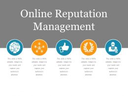 Online Reputation Management Ppt Sample File