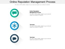 Online Reputation Management Process Ppt Powerpoint Presentation File Information Cpb