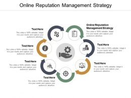 Online Reputation Management Strategy Ppt Powerpoint Presentation Summary Brochure Cpb