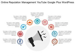 Online Reputation Management Youtube Google Plus Wordpress