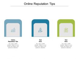 Online Reputation Tips Ppt Powerpoint Presentation Infographic Template Good Cpb