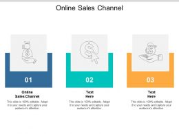 Online Sales Channel Ppt Powerpoint Presentation Styles Images Cpb