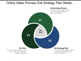 Online Sales Process Exit Strategy Plan Media Planning