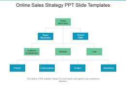 Online Sales Strategy Ppt Slide Templates