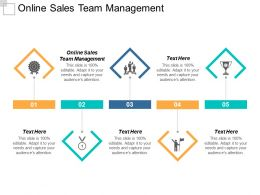 Online Sales Team Management Ppt Powerpoint Presentation Pictures Icons Cpb