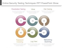 Online Security Testing Techniques Ppt Powerpoint Show