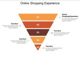 Online Shopping Experience Ppt Powerpoint Presentation Infographics Infographic Template Cpb