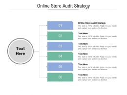 Online Store Audit Strategy Ppt Powerpoint Presentation Show Designs Download Cpb