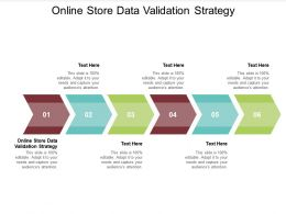 Online Store Data Validation Strategy Ppt Powerpoint Presentation Pictures Background Images Cpb
