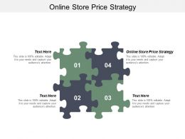 Online Store Price Strategy Ppt Powerpoint Presentation Infographic Template Guide Cpb