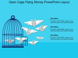 Open Cage Flying Money Powerpoint Layout