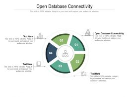 Open Database Connectivity Ppt Powerpoint Presentation Outline Display Cpb