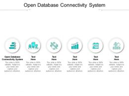 Open Database Connectivity System Ppt Powerpoint Presentation Portfolio Format Cpb