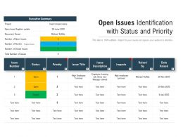 Open Issues Identification With Status And Priority
