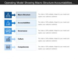 Operating Model Showing Macro Structure Accountabilities Governance And Culture