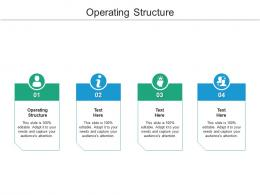 Operating Structure Ppt Powerpoint Presentation Inspiration Design Inspiration Cpb