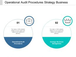 Operational Audit Procedures Strategy Business Management Resource Strategy Cpb