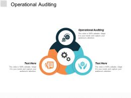 Operational Auditing Ppt Powerpoint Presentation Model Graphics Cpb