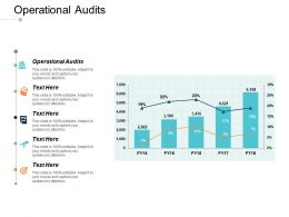 Operational Audits Ppt Powerpoint Presentation Inspiration Visuals Cpb