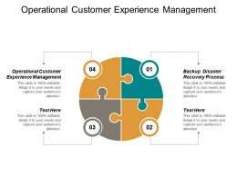 Operational Customer Experience Management Backup Disaster Recovery Process Cpb
