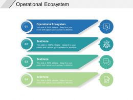 Operational Ecosystem Ppt Powerpoint Presentation Ideas Brochure Cpb