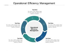 Operational Efficiency Management Ppt Powerpoint Presentation File Clipart Images Cpb