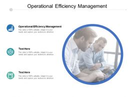 Operational Efficiency Management Ppt Powerpoint Presentation Ideas Slideshow Cpb