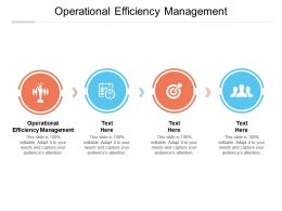 Operational Efficiency Management Ppt Powerpoint Presentation Slides Icons Cpb