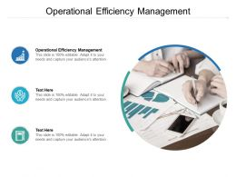 Operational Efficiency Management Ppt Powerpoint Presentation Summary Examples Cpb