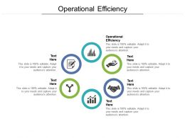 Operational Efficiency Ppt Powerpoint Presentation Icon Professional Cpb